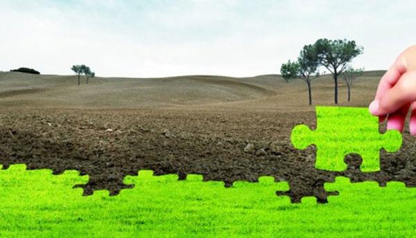 土壤修复治理阶段性监理