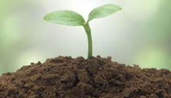 土壤应急治理环境监理